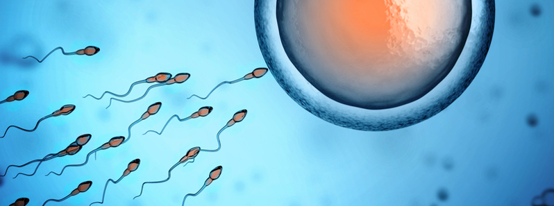 Low Sperm Count - How to Get Pregnant